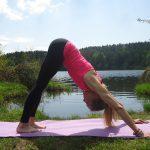 nach unten schauender Hund Yoga dieneni